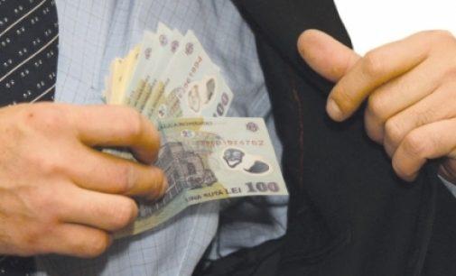 Jumătate dintre dosarele de evaziune fiscală, încă nesoluţionate