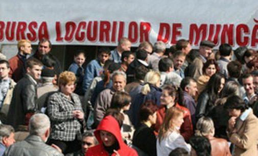 500 locuri de muncă, oferta Bursei Locurilor de Muncă organizată pe 10 august, la Râmnicu Vâlcea