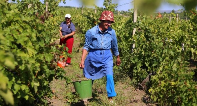 Românii pleacă din ţară în căutarea unor joburi mai bune