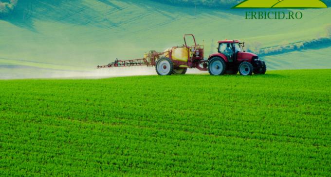 Totul despre insecticide