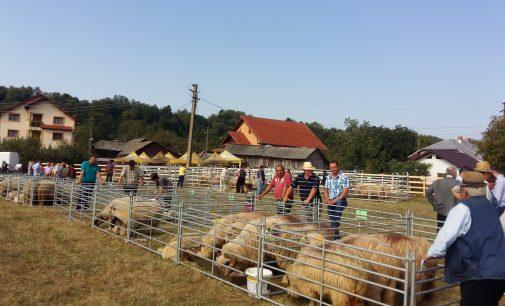 Ministrul Agriculturii, Petre Daea, aşteptat la Vaideeni la Târgul de animale