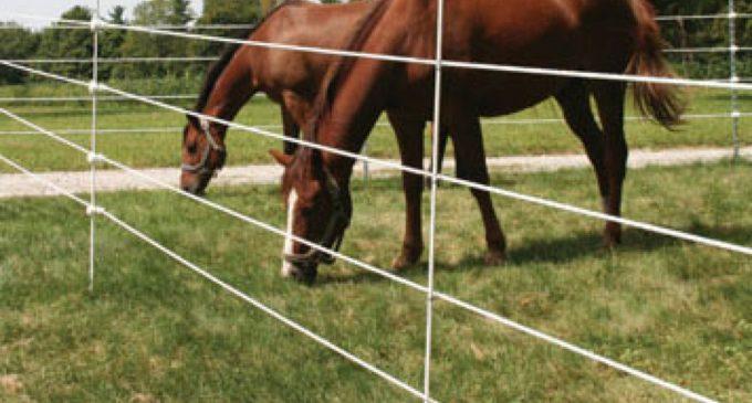 Gardul electric pentru animale – un ajutor al fermierului, nu un dăunător al animalelor
