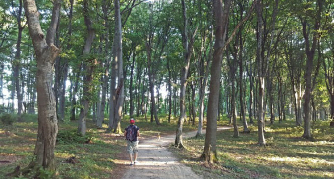 Unde ieşim la iarbă verde, în apropiere de Cluj-Napoca?