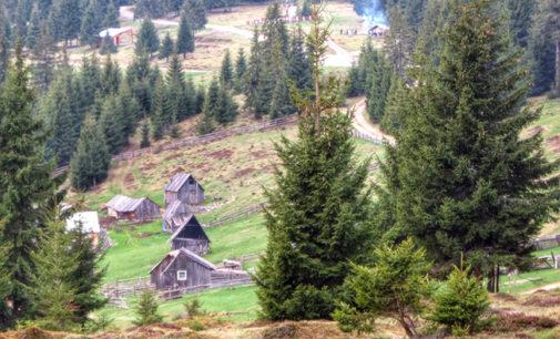 Defilee spectaculoase în zona Măguri – Răcătău