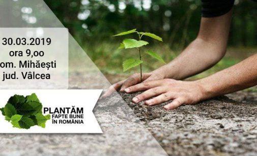 500 de puieți se vor planta pe 30 martie, la Mihaești
