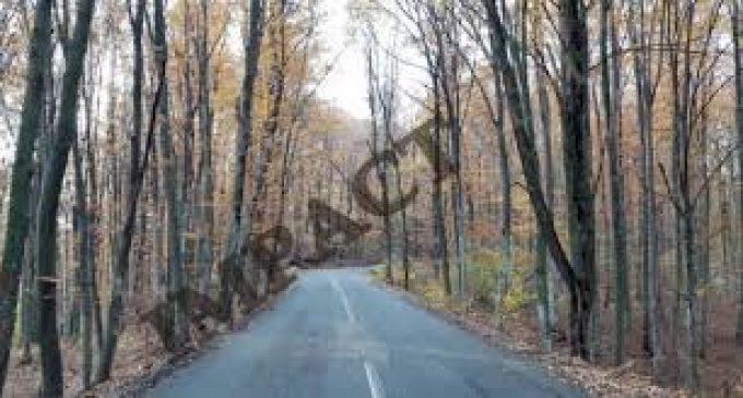 Încep lucrările pe drumului judeţean 677A, Şirineasa – Pesceana