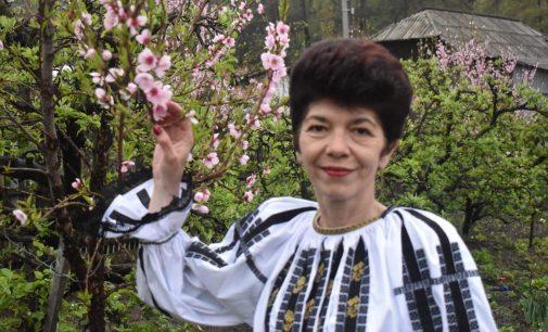 Inspectoratul Școlar Județean Vâlcea are un nou inspector general