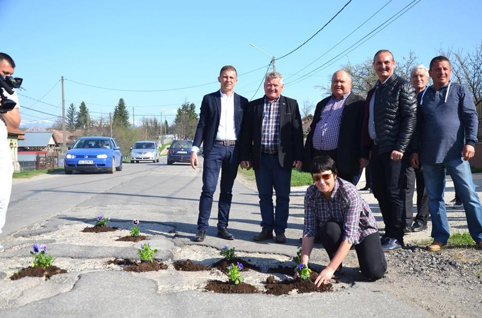 Protest inedit la Vâlcea: liberalii au plantat panseluţe în gropile unui drum judeţean