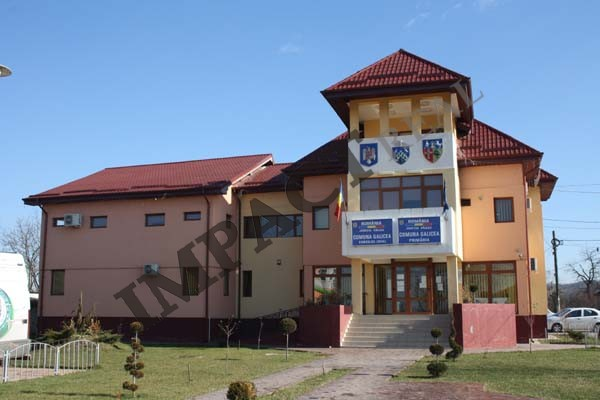 ANUNŢ: Consiliul Local al comunei Galicea anunţă scoaterea la licitaţie a suprafeței de 22 ha păşune comunală