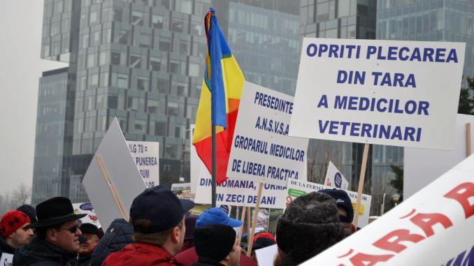 A început protestul medicilor veterinari vâlceni