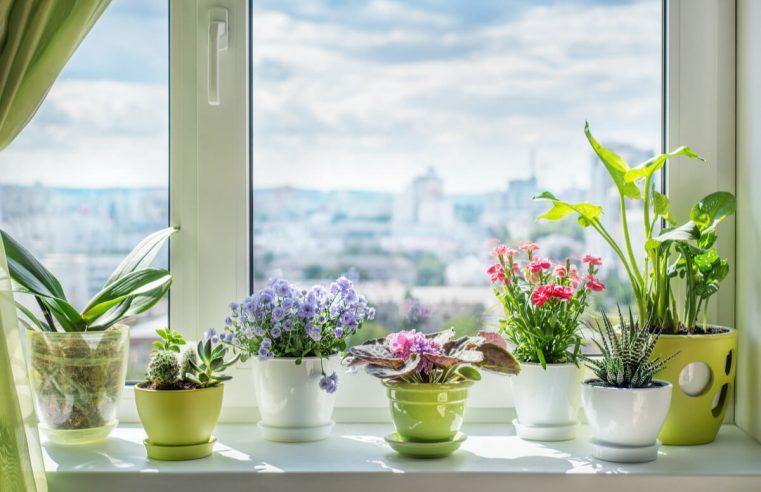 3 moduri inedite prin care alegerea ferestrelor îți poate influența în mod minunat designul interiorului locuinței
